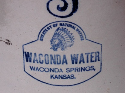 Waconda Springs jug