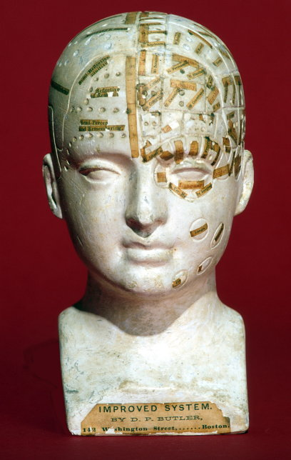 Phrenology head or bust