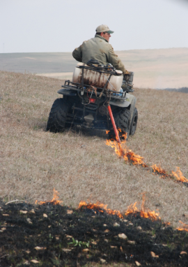 Firestick in use on Talkington ranch