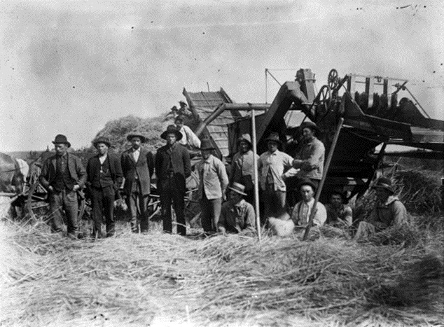 Threshing crew in Marion County, ca. 1890.