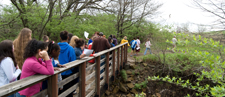 Nature Trail tour