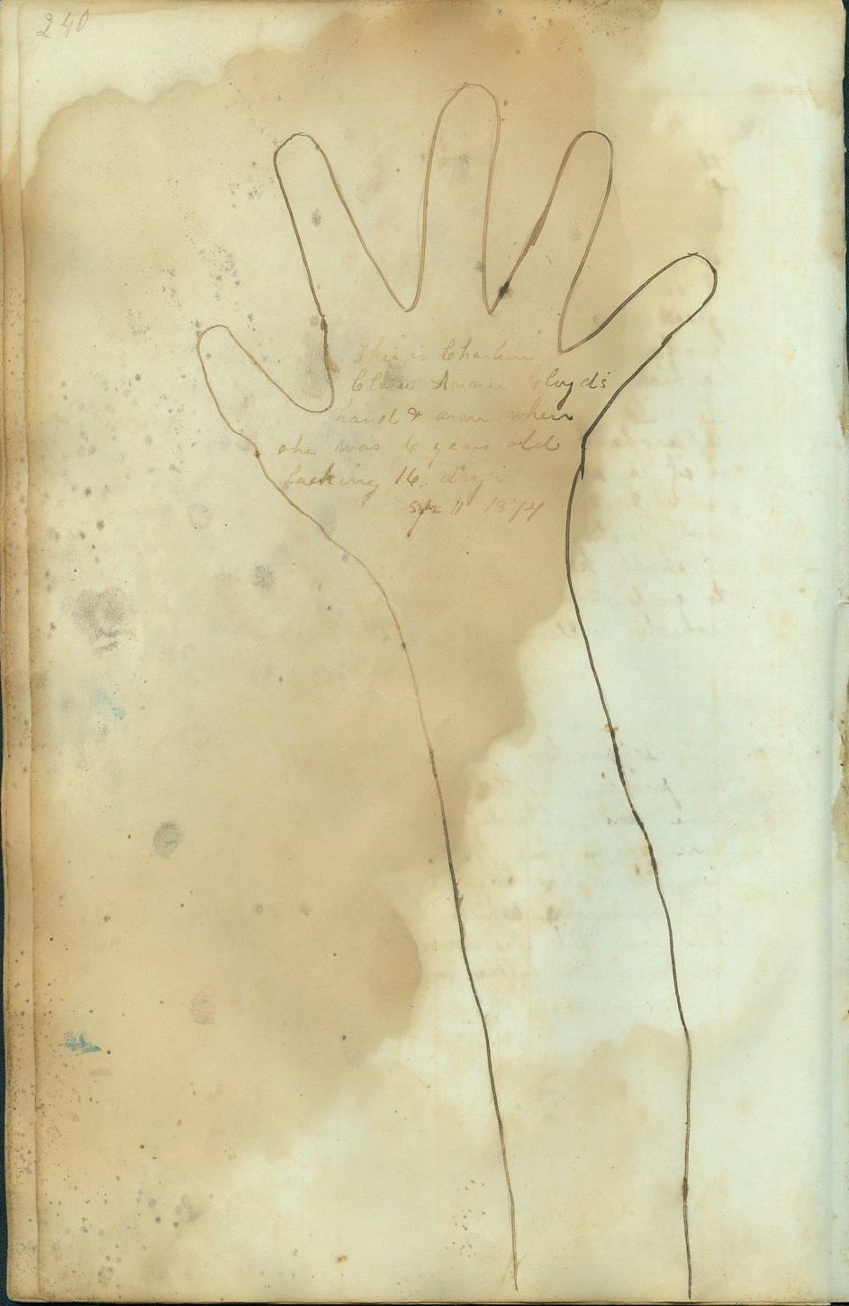 "Page from Carry Nation's diary inscribed, ""This is Charlien . . . Gloyd's hand + arm when she was 6 years old lacking 16 days. Sep. 11 1874."""