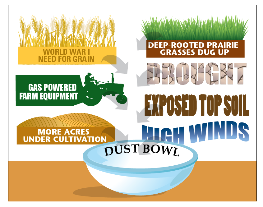 Causes of the Dust Bowl.