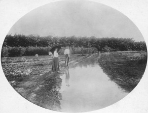Irrigation ditch near Englewood, ca. 1900.