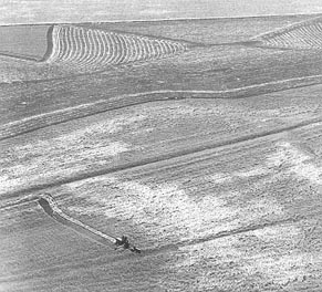 Aerial view of a Kansas wheat field. Photo courtesy of the  Kansas Industrial Development Commission.