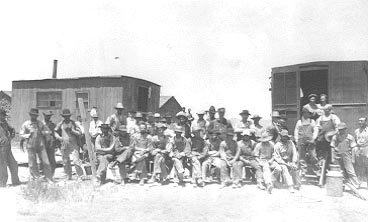 Threshing crew and cookshack wagons, ca. 