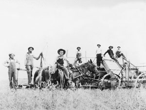 Harvest crew on Stude farm near Stafford, ca. 1925. John Stude is second from left.