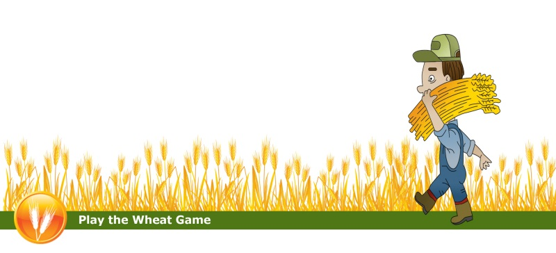 Play the Wheat Game