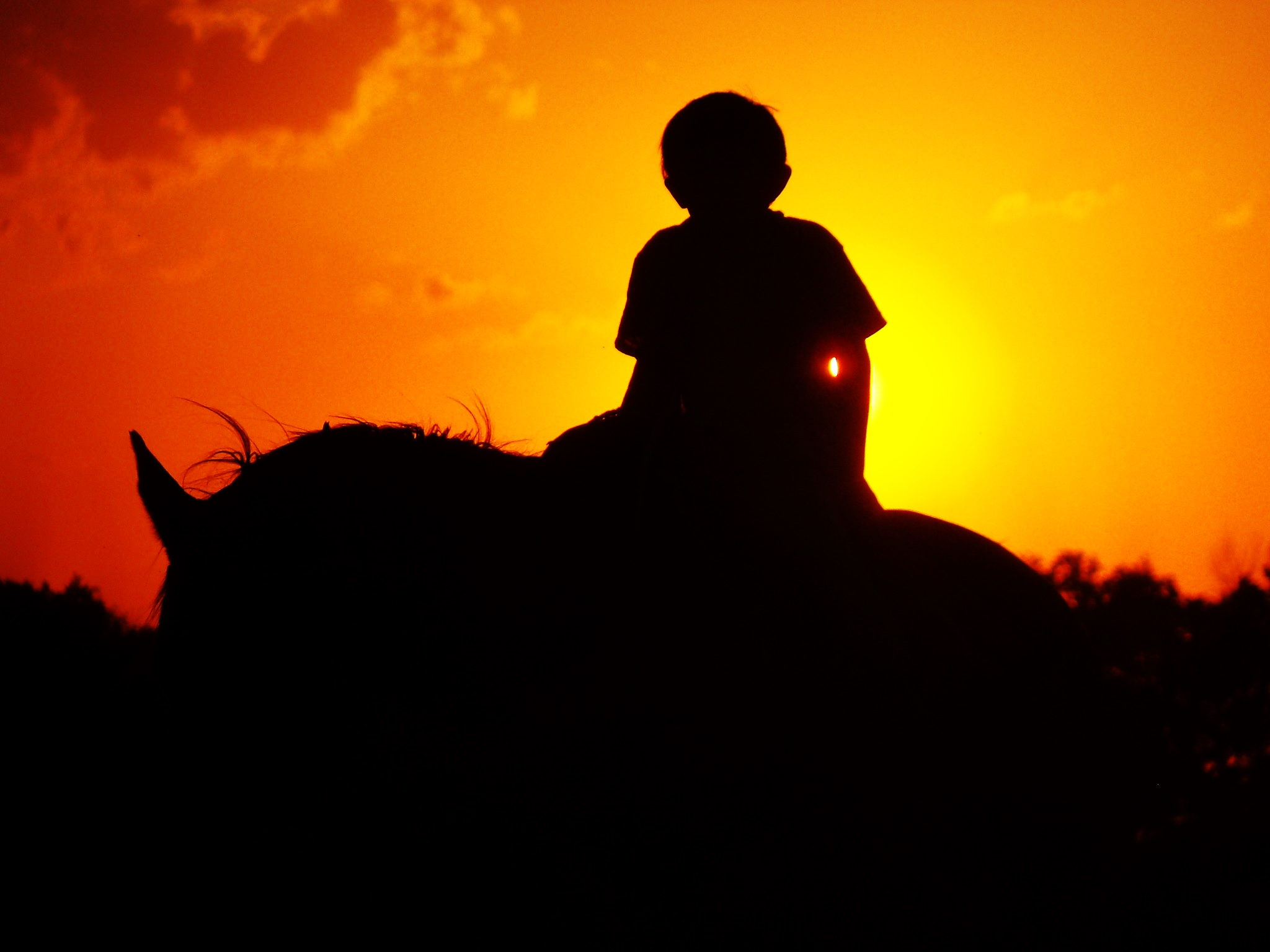 Boy sitting on horse, beautiful sunset in background.