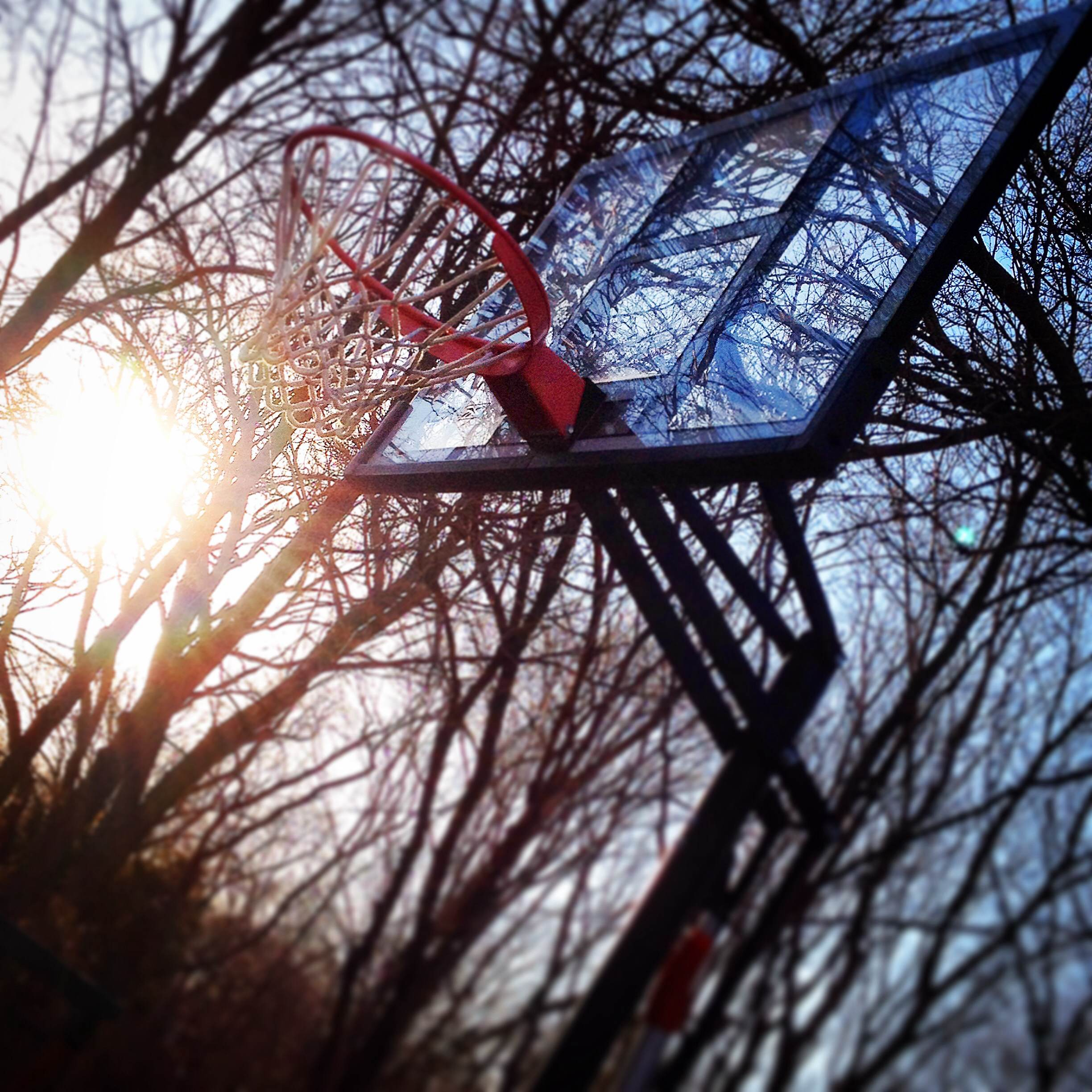 Evening Hoops and Dreams by Paige Schroeder