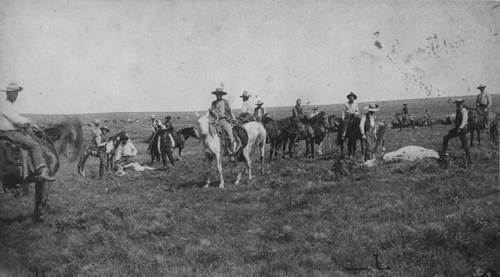 Cattle roundup on a ranch near Hunnewell