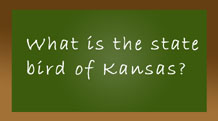 What is the state bird of Kansas?