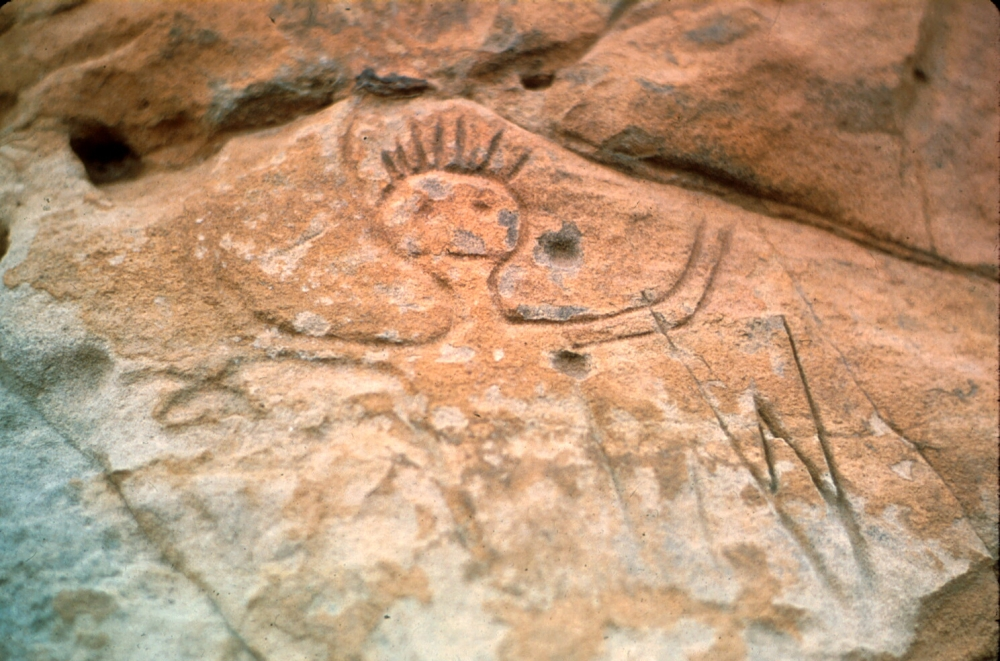 Ellsworth County petroglyph