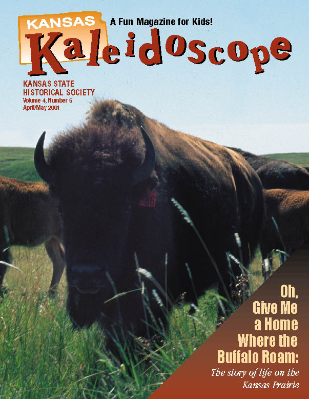 Kansas Kaleidoscope, April/May 2001