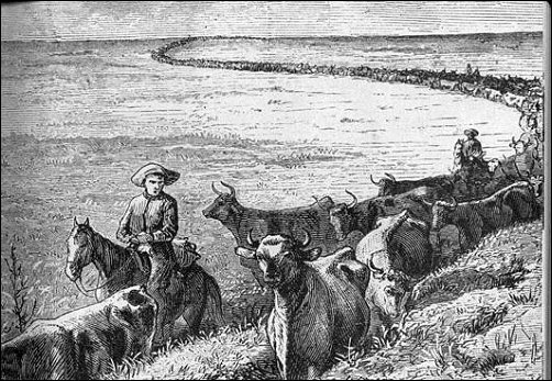 [cattle moving in a long line stretching sinuously back to the horizon.]