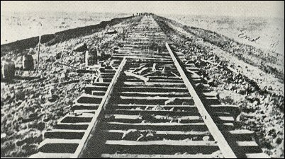 Santa Fe track east of Hutchinson, 1872