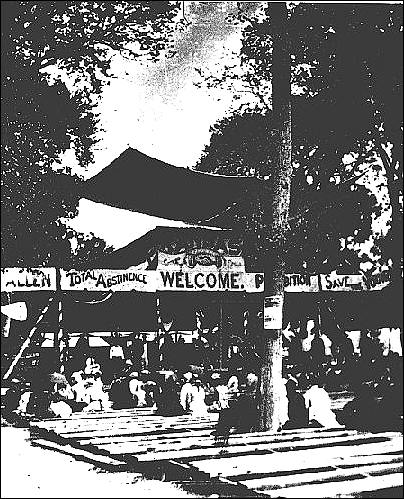 National Temperance camp at Bismarck Grove, 1878