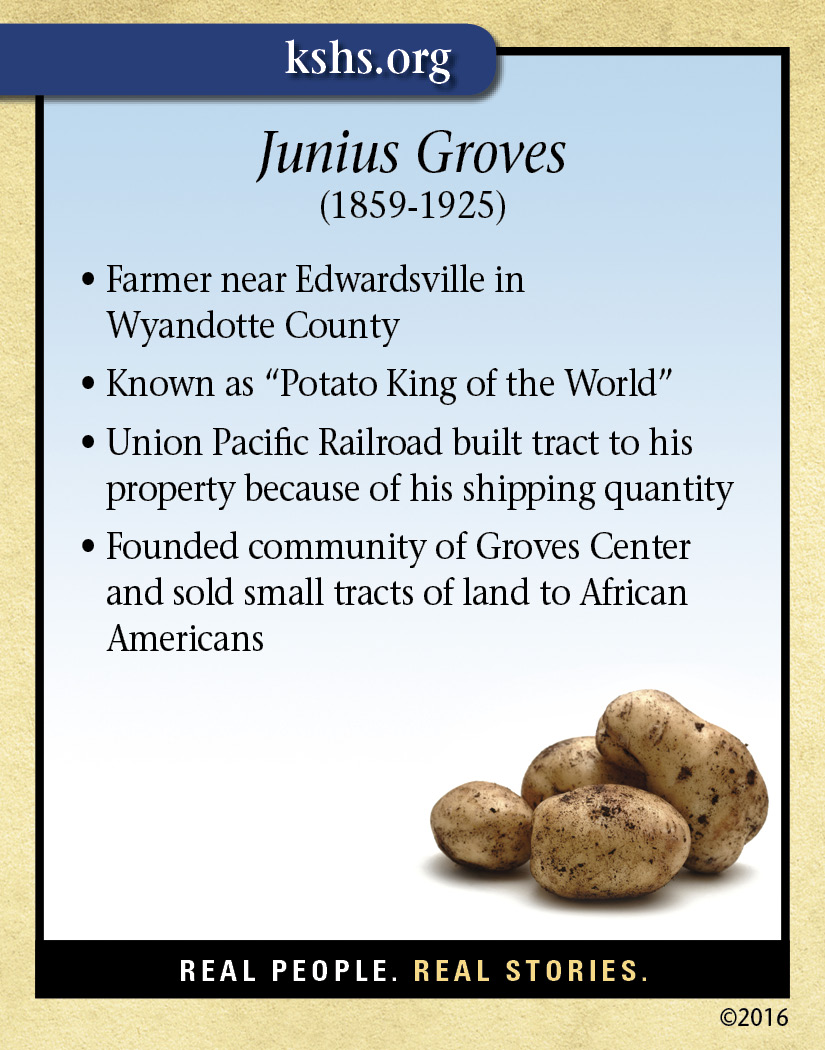 Junius Groves