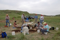 Archeology training program