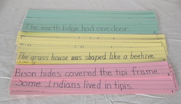 Sentence strips for three types of housing.